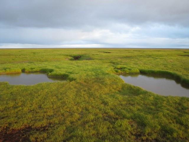 rzeka peczora zdjęcia z wyprawy kajakiem składanym walkure-2